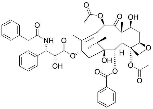 Benzyl Analog of Taxol