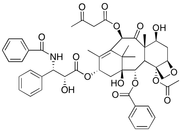 10-Acetoacetyl Paclitaxel