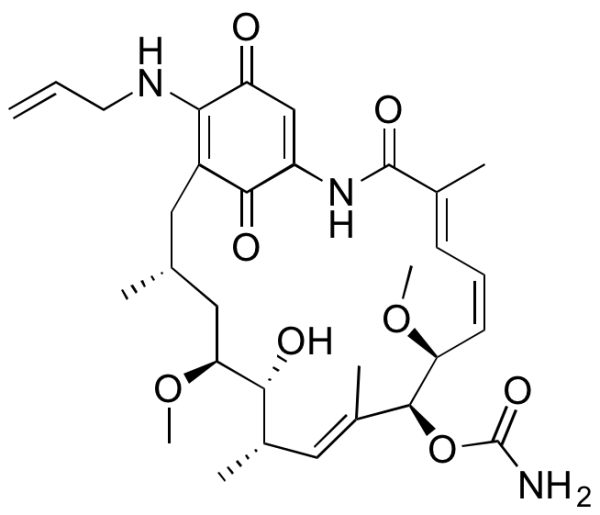 17-Allylaminogeldanamycin