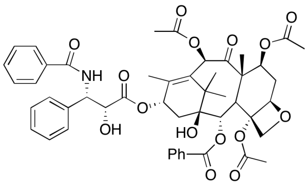 7-Acetyl Paclitaxel